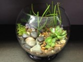 Succulent Garden Bubble Bowl