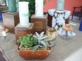 succulent garden dish garden