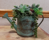 Succulent Garden in Distressed Watering Can