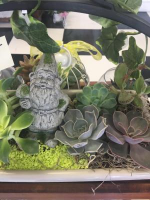 Succulent Garden Live planter in Lakeside, CA | Finest City Florist