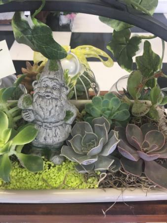 Succulent Garden Live planter