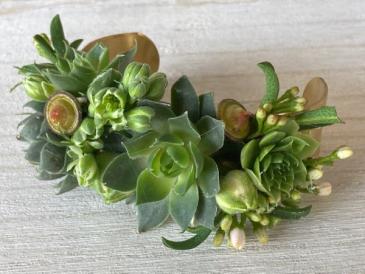 Succulent Garland Corsage