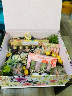 Succulent Gift Box   in Sedalia, MO | State Fair Floral