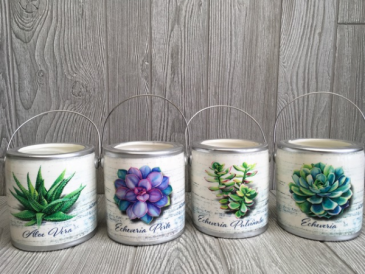 Succulent jar candle