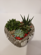 Succulent Planter Heart