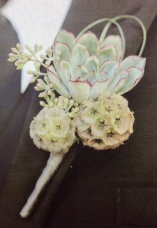 Succulent & Scabiosa Boutonniere