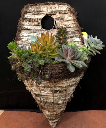 Succulent Wall Basket 1