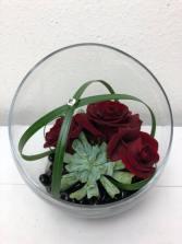 Succulent Sweetness Roses and Succulent Plant