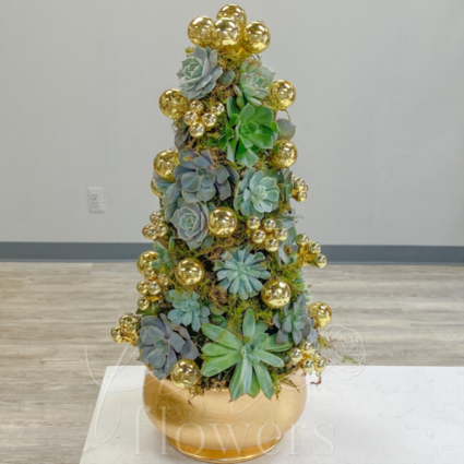 Succulent Tree Holiday Arrangement