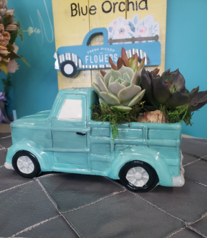 Succulent Truck   in Richmond, MI | The Blue Orchid
