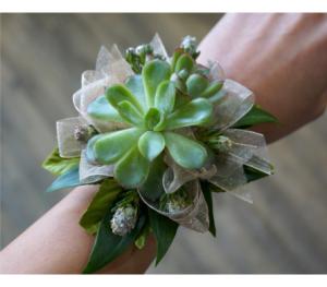 Succulent Wrist Corsage  in Allen, TX | Lovejoy Flower and Gift Shop