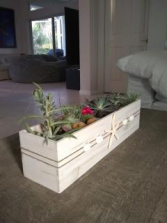 Succulents Wooden Box
