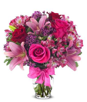 Sugar Plum Mixed Arrangement  Deal of The Week!