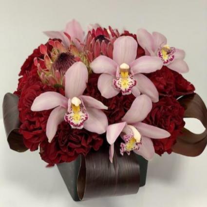 Sukkot, Burgundy (orchid & Protea)