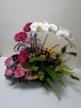 Sumiko Garden Tropical arrangement