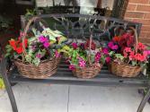 Summer Annual Baskets