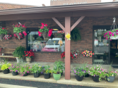 Summer baskets Blooming annuals