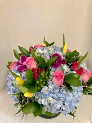 Summer Beauty  in Medfield, MA   Lovell's Florist, Greenhouse & Nursery
