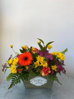 Summer Bloom Box  in La Grande, OR | FITZGERALD FLOWERS