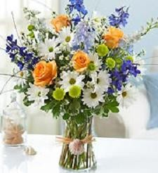 Thinking of you...and the Beach! Best Seller! in Gainesville, FL | PRANGE'S FLORIST