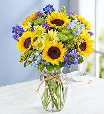 Summer Fields of Europe  Arrangement