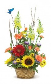 Summer Fun! Basket Arrangement