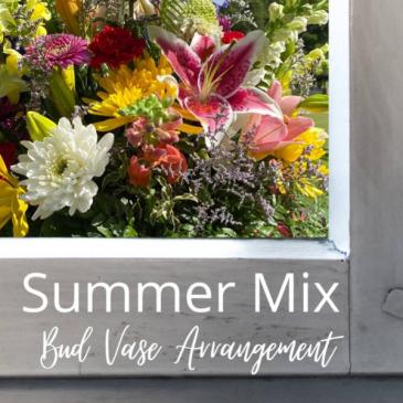Summer Mix-Bud Vase Arrangement