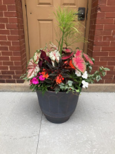 Summer Patio Planter