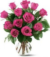 1 Dz Purple Lavender  Roses in Vase Rose Special!