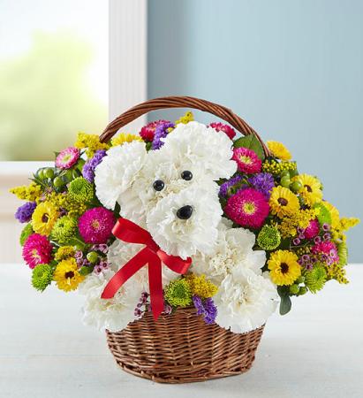 Summer Pup Adorable Adogable in a basket