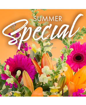 Summer Special Weekly Deal in Salisbury, NC | FLOWER TOWN OF SALISBURY