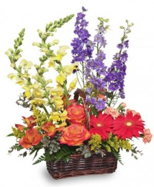 Summer's End Basket of Flowers in Cary, NC | GCG FLOWERS & PLANT DESIGN