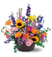 Summertime Sensation Basket  Birthday Vase
