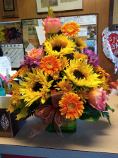 Sun flowers and Gerbera Daisies Container