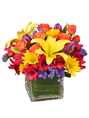 SUN-INFUSED FLOWERS Summer Arrangement in Blue Bell, PA | BLOOMS AND BUDS
