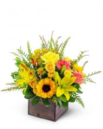 Sun-Kissed Favorite Flower Arrangement
