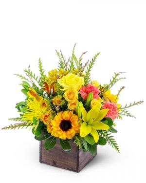 Sun-Kissed Favorite Flower Arrangement in Nevada, IA | Flower Bed