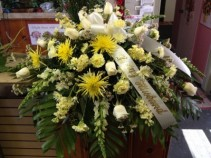 Sun light  Serenity yellow and white casket spray