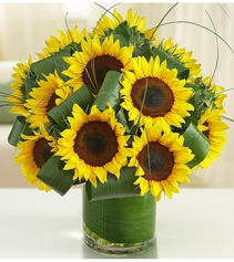 Sun-Sational Sunflowers™ Arrangement