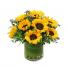 Sunny Flowers  Everyday