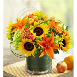 Sunburst Bouquet Vase Arrangement  in Schenectady, NY | Flowers by Jo-Ann