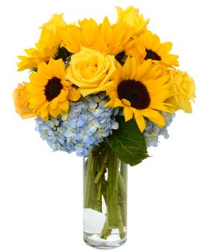 Same day flowers colorado springs flowers healthy sunburst fl arrangment in colorado springs co enchanted florist ii mightylinksfo