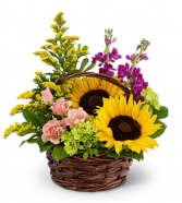 Sunflower basket mixed blooms  Best Sellers