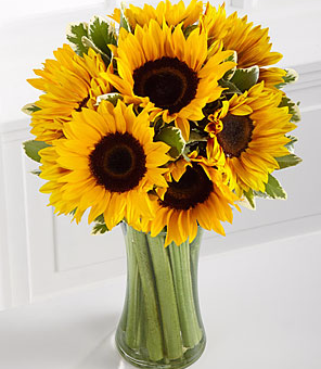 Sunflower Bouquet  Vase arrangement in Orlando, FL | Artistic East Orlando Florist