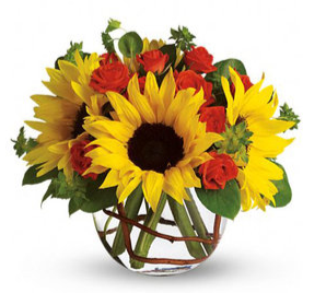 Sunflower Bowl Arrangement in Croton On Hudson, NY | Cooke's Little Shoppe Of Flowers