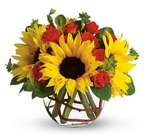 Sunflower Bowl Arrangement