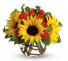 Sunlit Autumn Medley™ Arrangement