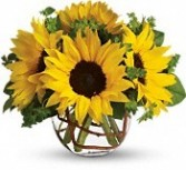Sunflower Bowl Fall Floral