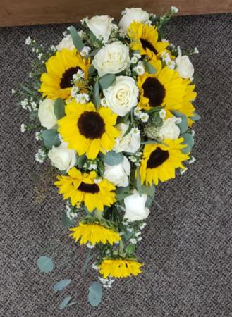 Sunflower Cascading Bouquet In Elkton Md Fair Hill Florist