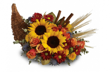 Sunflower-copia